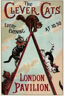 Vintage Cat Poster