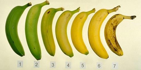 Banana Ripening Chart found at http://postharvest.ucdavis.edu