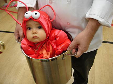 Baby Lobster (Found via a Google image search - I'm not sure who took the original photo.)