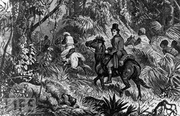 """Mungo Park From LIFE.com """"Scottish explorer Mungo Park (1771-1806), who explored the Niger River in Africa, on horseback encountering lion in jungle."""""""