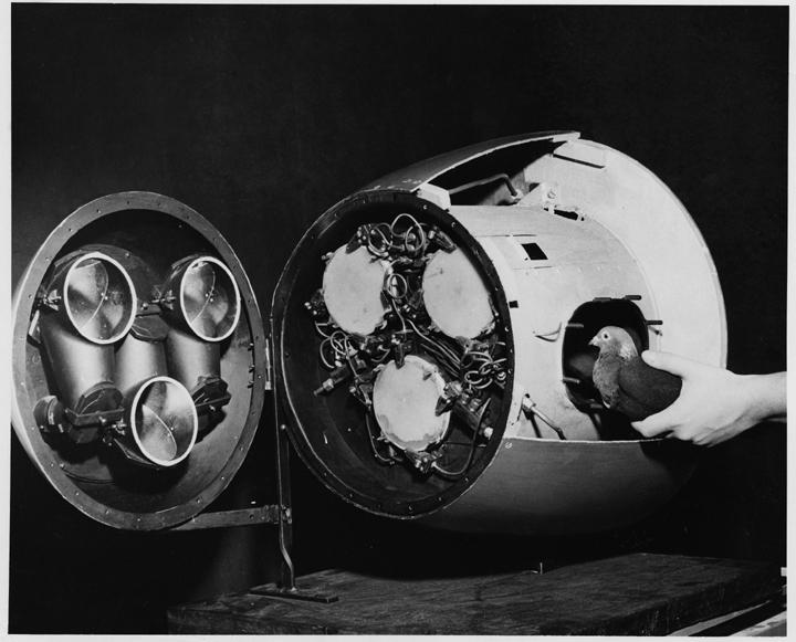 Pigeon Missile Prototype